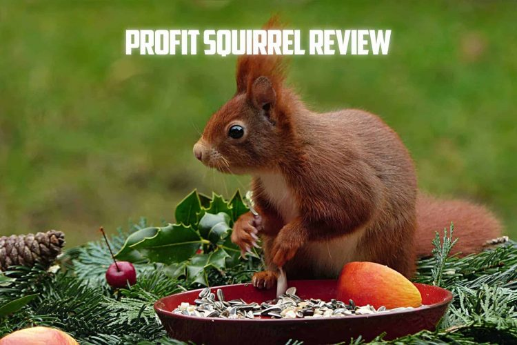 PROFIT SQUIRREL REVIEW
